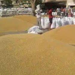 लखनऊ में इलेक्ट्रॉनिक वेटिंग मशीन में चिप लगाकर किसान ग्राहकों को ठगा जा रहा है।