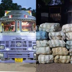 मेरठ एसटीएफ टीम द्वारा पकड़ा गया ट्रक और ट्रक से बरामद 11 कुंटल गंजा