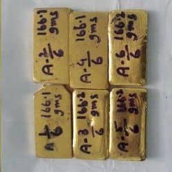 महिला तस्कर से बरामद विदेशी सोने के बिस्कुट