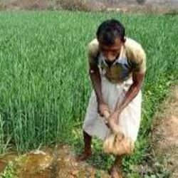 कांग्रेस कमेटी द्वारा किसान अधिकार दिवस के अवसर पर सत्याग्रह सह धरना आयोजित हुआ