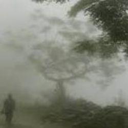पटना में ठंड से बचाव के लिए लोगों को सावधानियां बरतनी चाहिए