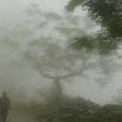 पटना में पिछले कुछ दिनों से बादल छाए रहने और धुंध गहरी होने से ठंड काफी बढ़ गई है