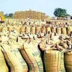 वाराणसी: एक महीने से किसान परेशान, हर दिन धान क्रय केंद्र के लगा रहे चक्कर