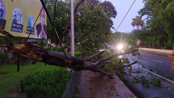 पटना में तेज आंधी और तूफान की वजह से कई इलाकों में पेड़़ गिर गए.