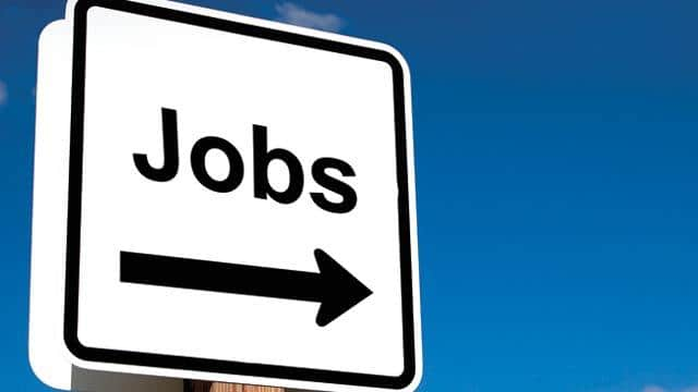 jobs in up government