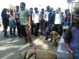 rampage and highway jaam after Ambedkar statue Damaged at munger