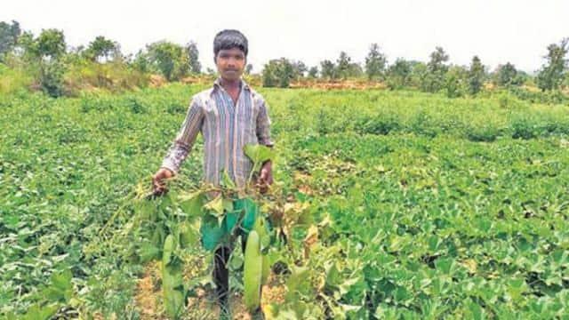नन्हा किसान पढ़ाई के साथ खेती कर कमाता है लाखों रुपए