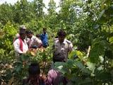 लक्ष्मीपुर में गला काटकर हत्या