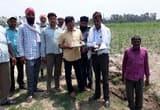 पूरनपुर क्षेत्र के साढ़े आठ हजार किसानों का हुआ गन्ना सर्वे