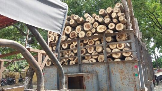हजारा की लकड़ी भरे ट्राले को सम्पूर्णानगर पुलिस ने पकड़ा