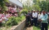 जिपं कस्ता में पौधे लगाकर सुरक्षा का लिया संकल्प