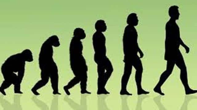 20 लाख साल पहले एशिया आए थे मानव