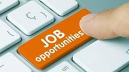 डाटा एंट्री ऑपरेटर के 463 पदों पर होगी भर्तियां, क्लिक कर पढ़ें आवेदन प्रक्रिया