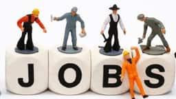 NHM Punjab Recruitment 2019: पंजाब में कम्युनिटी हेल्थ ऑफिसर की 1000 वैकेंसी
