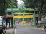 टाटा स्टील जूलॉजिकल पार्क में मिलेगा हाइजेनिक विदेशी फूड