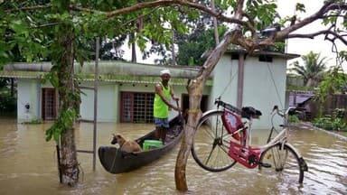 केरल बाढ़: लोगों के लिए आई नई मुसीबत, घरों में घुसे मगरमच्छ और सांप