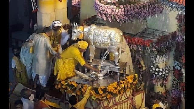 birth celebration of lord krishna in mathura temple