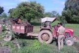 गजहा के सरकारी फार्म हाउस में वनमाफिया की गड़ी निगाहें