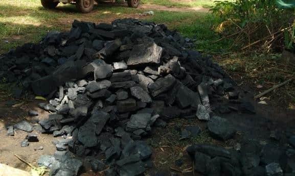 तीनघरा गांव से भारी मात्रा में अवैध कोयला बरामद