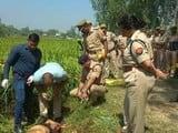 रामपुर के शाहबाद में ग्रामीण की चाकु से गोदकर हत्या