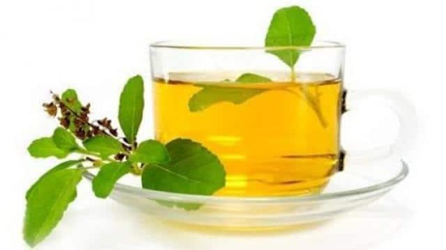 know 5 benefits of drinking Tulsi tea - तनाव घटाने में मददगार है तुलसी की  चाय, जानिए इसके ऐसे ही 5 फायदे 1