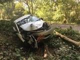 बंदर को बचाने में पेड़ में घुसी कार, पांच घायल