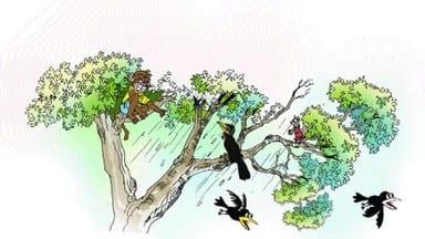 झगड़ालू बंदर मोकू
