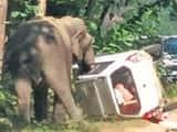 हाथी के हमले के बाद हाईवे पर लगा जाम