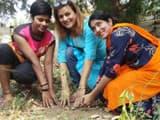 बनारस के हर वार्ड में लगाए जाएंगे सहजन के 50 पौधे