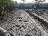 गांवों में घुस आए हाथी, कई जगह किया उत्पात
