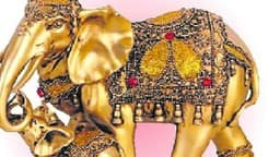 फेंग्शुई हाथी है सौभाग्य का साथी, मुख्यद्वार पर रखने से समृद्धि, सौभाग्य एवं सफलता को करता है आमंत्रित