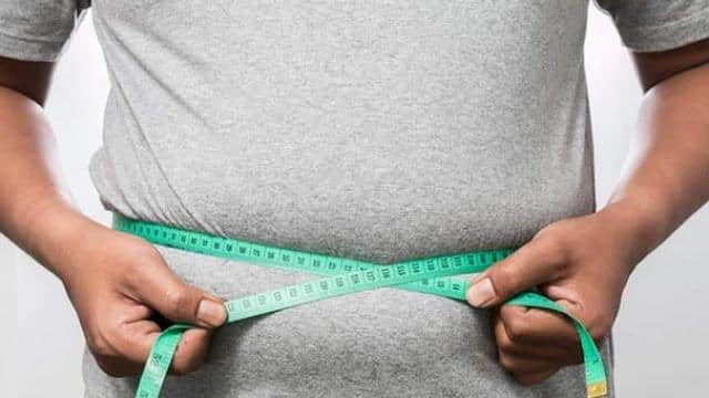 stomach fat can affect your brain