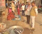 मछली बाजार में सन्नाटा, लोकल की मांग बढ़ी