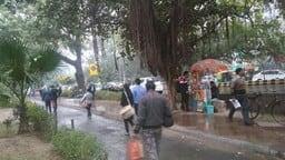 दिल्ली-NCR में अचानक बदला मौसम का मिजाज, तेज हवा के साथ बारिश