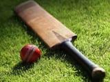 Cricket Representational Image.jpg