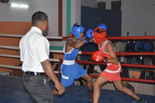 मुक्केबाजों ने दमदार पंच मारकर सेमीफाइनल में प्रवेश किया