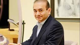 nirav modi pnb scam  photo by ani