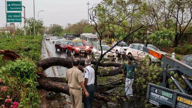 jaipur  police personnel look on as people remove a fallen tree obstructing traffic  after a thunder