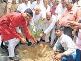 पौधरोपण कर मनाया कांग्रेस नेता प्रमोद तिवारी का जन्मदिन