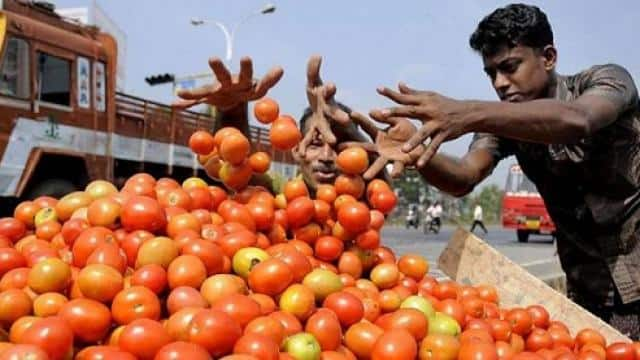 tomato price hike in delhi
