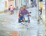सिकंदरपुर व बालूघाट में एक सप्ताह से सड़ रहा पानी