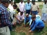 बीएसए की निगरानी में लगाए गए 997 पौधे