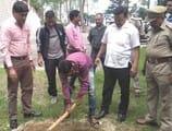 वन विभाग ने पौधारोपण कार्यक्रम के तहत कैंट की भूमि में लगाए चिनार के पौधे