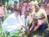 टिकरी प्राथमिक विद्यालय में पौधरोपण, ड्रेस वितरण