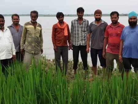 कर्ज में डूबे अनूपनगर के कटान पीड़ित किसान परेशान
