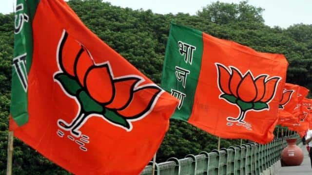 jharkhand  bjp may cut sitting mlas ticket in assembly election after lok sabha elections
