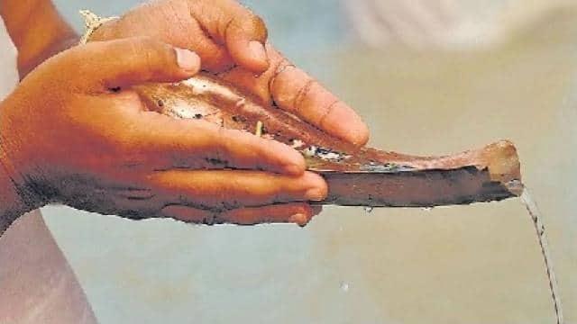 Pitru Paksha Shradh 2021 : पितृ पक्ष आज से, ऐसे करें तर्पण, श्राद्ध से चुकाया जाता है पितरों का ऋण