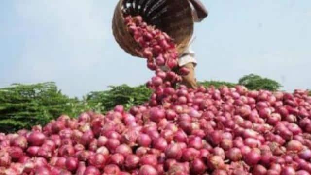 arvind kejriwal govt will sell onion in delhi