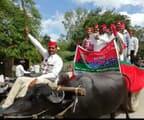 विरोध का नायब तरीका, भैंसा गाड़ी पर सवार होकर सपाइयों ने किया प्रदर्शन