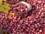 onion prices have soared across india